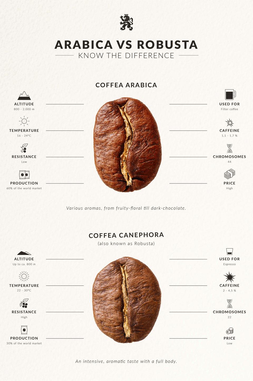 arabica vs robusta verschillen
